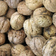 Fresh wholesome walnuts — Stock Photo
