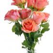 Stock Photo: Posy of pink roses