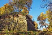 Kalenin içinde nowy wisnicz sur duvarı — Stok fotoğraf