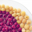 Stock Photo: Red and yellow raspberries