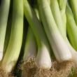 Leeks vegetable — Stock Photo