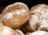 Bread in bakery — Stock Photo