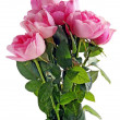 Posy of pink roses — Stock Photo