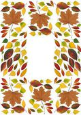 Multicolor leaves as nature background — Stock Photo