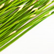 Stock Photo: Chinese chive tilted on white background