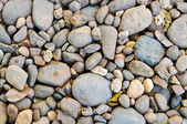 Closeup of rock in nature — Stock Photo