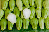 Fresh Chayote vegetables cut for detail — Stock Photo