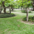 Landscape of Garden with Freshly Mown Lawn — Stock Photo #41209557