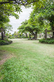 Landscape of Garden with a Freshly Mown Lawn — Stock Photo