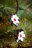 Beautiful necklace on a branch of fir — Stock Photo