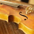 Close-up of an old violin — Foto Stock
