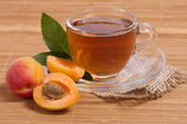 Glass tea cup with apricots — Stock Photo