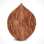 Vector complete coconut — Stock Vector #12587231