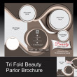 Stock Photo: Tri fold parlor brochure