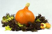 かぼちゃ、レタス、桃の静物 — ストック写真