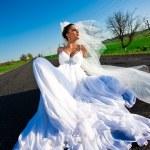 Amazing Bride — Stock Photo #8770175