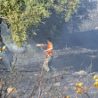 Zakynthos island low scale fire in volimes July 03 2013,Greece — Stock Photo