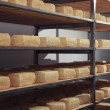 Stock Photo: Maturing cheese storehouse