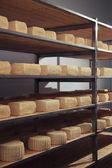 Maturing cheese storehouse — Stock Photo