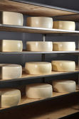 Maturing cheese storehouse — Stock Photo