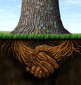 Strong Business Roots — Foto Stock