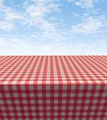 Mesa-toalha de mesa quadriculada — Foto Stock