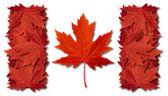 Canada Leaf Flag — Stock Photo