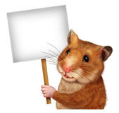 Pet Hamster Holding A Blank Sign — Stock Photo