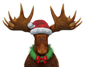 Christmas Moose — Stock Photo