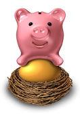 Savings Nest Egg — Stock Photo