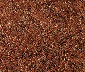Lněné semínko — Stock fotografie