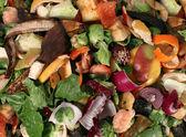 Kompostlama — Stok fotoğraf