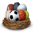 Stock Photo: Sports Nest