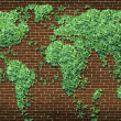 Global Leaf Map - Stock Photo