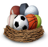 Sports Nest — Stock Photo