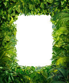 Jungle Border — Stock Photo