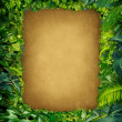 Wild Jungle Frame — Stock Photo
