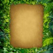 Wild Jungle Frame - Stock Photo