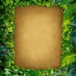 Wild Jungle Frame — Stock Photo