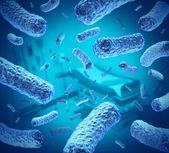 医院感染细菌 — 图库照片