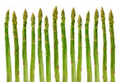 Asparagus vegetable — Stock Photo