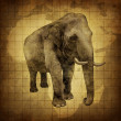 Royalty-Free Stock Photo: Elephant On a Grunge Texture
