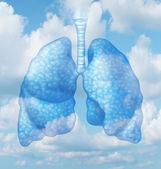 Clean Air — Stock Photo