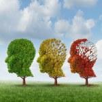 stárnutí mozku — Stock fotografie