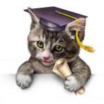 Pet School — Stock Photo #26860713