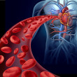 Heart Blood Health — Stock Photo