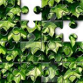 Gardening Concept — Stock Photo