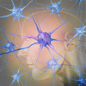 Human Neurons — Stock Photo