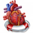 Heart Rescue — Stock Photo #29313065