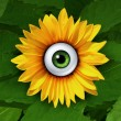 Stock Photo: Eye On Nature